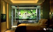 水草造景温泉+雨林