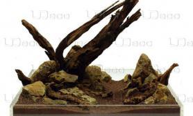 """木有""""石头""""、仅是""""木头""""也有别致的美"""