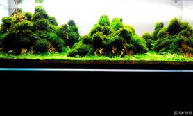 绿磬山  2013 ADA 732名