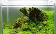 33cm小超白水草缸靠山石
