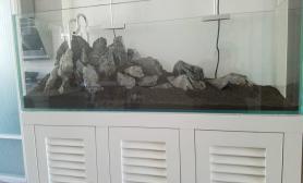 新手青龙石造景水草缸大神忙帮忙改改沉木杜鹃根青龙石水草泥