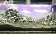 120石景缸  陶粒