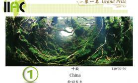 新一轮水草造景国际大赛作品展(1-25名)
