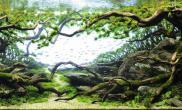 水草缸造景沉木老树盘根青龙石150CM森林