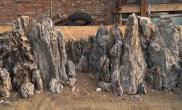 1米石景缸开缸记录 - 武陵源之奇美山水