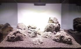 60*45缸火山石景水草缸怎么摆都不漂亮鱼缸水族箱