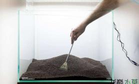 简单8步水草缸石景缸开缸教程