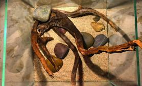 30cm亚马逊原生方缸骨架方案水草缸欢迎点评[定期更新]鱼缸水族箱