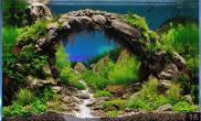 小鱼缸水草缸拱桥石头造型