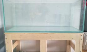 每个人心中都有一个水族世界鱼缸水族箱新人120开缸分享沉木杜鹃根青龙石水草泥