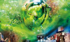 世界水草造景大赛2016 日程安排