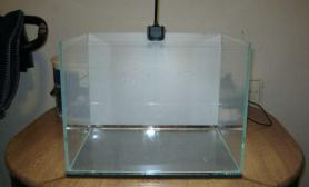 水族箱造景两堆土也可以做水草造景水草缸真是神奇鱼缸水族箱