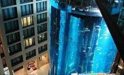 世界上最大的超级鱼缸(图)