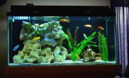养鱼用水基础知识