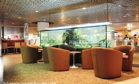 沉木青龙石造景缸与商业空间-15