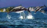 古老海洋食肉动物揭开皮肤之谜