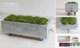 这样的水草缸水草缸保证你没见过鱼缸水族箱