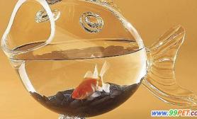 鱼缸不宜放在房屋中段(图)