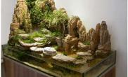 水族箱造景精彩不限的石头水草缸