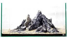 青龙石造景骨架欣赏 高手小缸水草缸教程