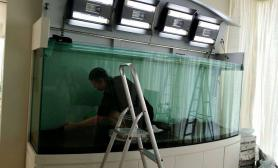 四位大师合力打造的极具中国风的水草缸