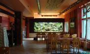 400×90×140cm 雨林生态缸