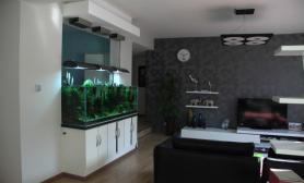 沉木青龙石造景缸与家装空间-41