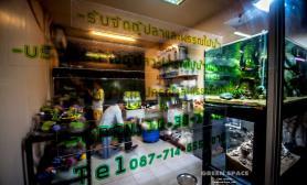 国外Greenspace水族店