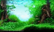 沉木青龙石水草造景120CM尺寸设计24
