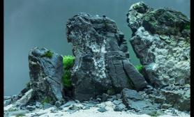 青龙石水草造景60CM案例欣赏图