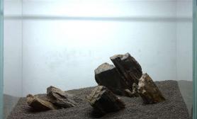 水族箱造景朋友家的石头水草缸