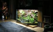 [转载]好任性的电视柜——雨林缸开缸教程