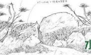 【申精】大师级草缸造景日记