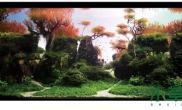 水族箱造景特别好看的一个水草造景