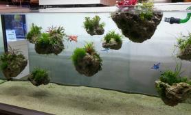 天空之城仿水草缸造景沉木青龙石浮石120CM尺寸设计