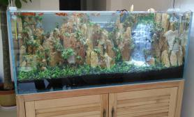 朋友开业水草缸新开一流沙瀑布景鱼缸水族箱