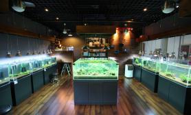 国内水族店水草缸造景北京尺寸设计水晶小屋店