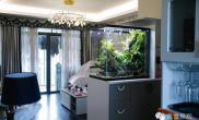 造景缸与家装空间箱体90*60*90cm