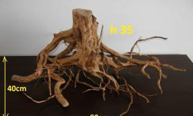 这个树根沉木真不错诶