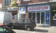国外水族店水草缸造景H2OAquarium
