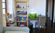 沉木青龙石造景缸与家装空间-47