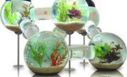 全球水族缸大收集创意不可思议(多图)