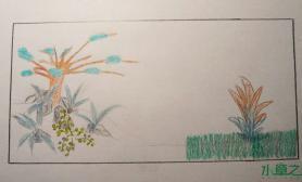 从简陋的草稿水草缸到最终的成景水草缸距离到底有多远?