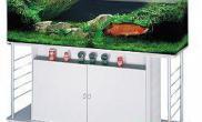AZOO龙鱼生化套缸180(图)