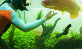 下水修剪水草水草缸顺便和鱼玩玩~