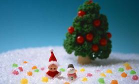 水草造景圣诞节祝语