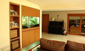 沉木青龙石造景缸与家装空间-02