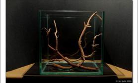 水草缸造景沉木水草泥化妆砂青龙石45CM及以下尺寸设计07