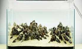 石景水草缸骨架欣赏借鉴青龙石龙骨石松皮石