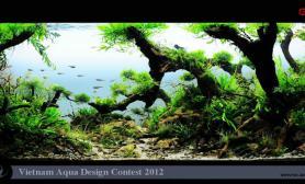 VietnamAquariumDesignContest2012